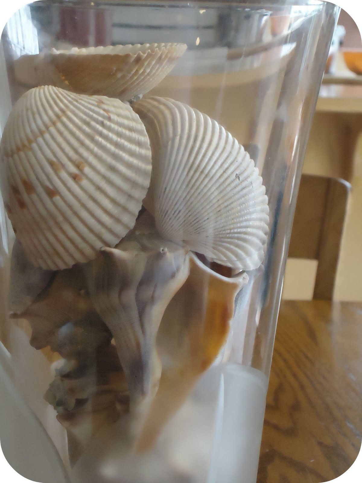 Homemade serenity why dont you make sea shell candles today we decided to make seashell candles reviewsmspy