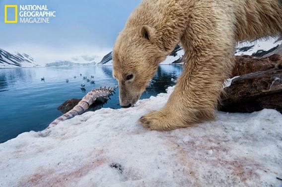 Cambio climático España National Geographic