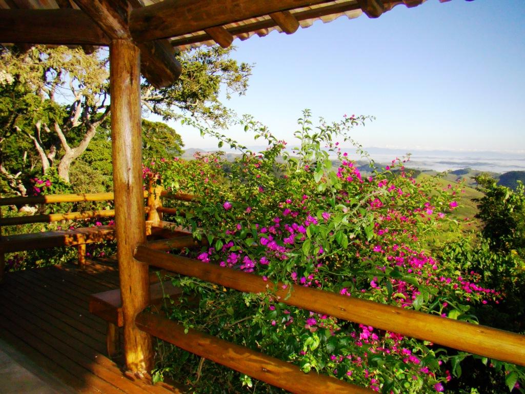 flores jardim primavera:hidro do chalé beija flor podemos apreciar o mulungu com suas flores