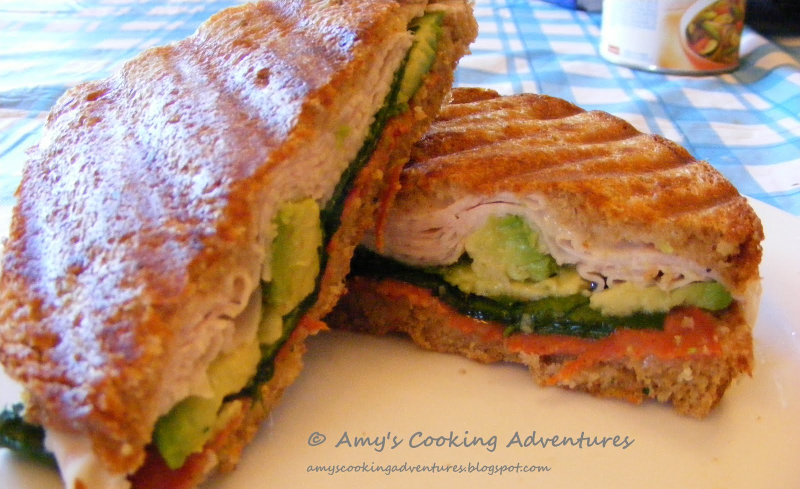 Turkey & Avocado Panini on Onion Bread