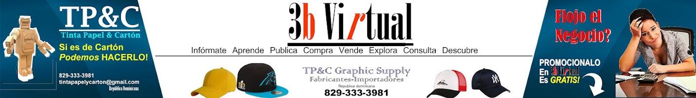 3b Virtual