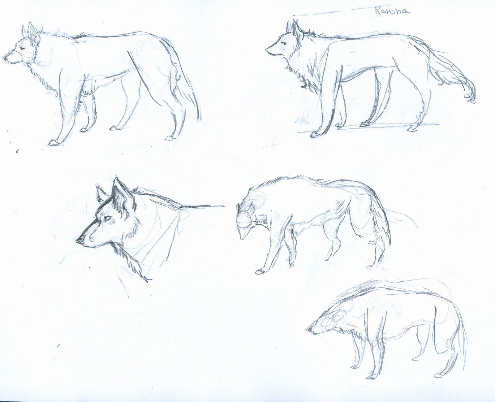 Jungle Book Sketches - DriverLayer Search Engine