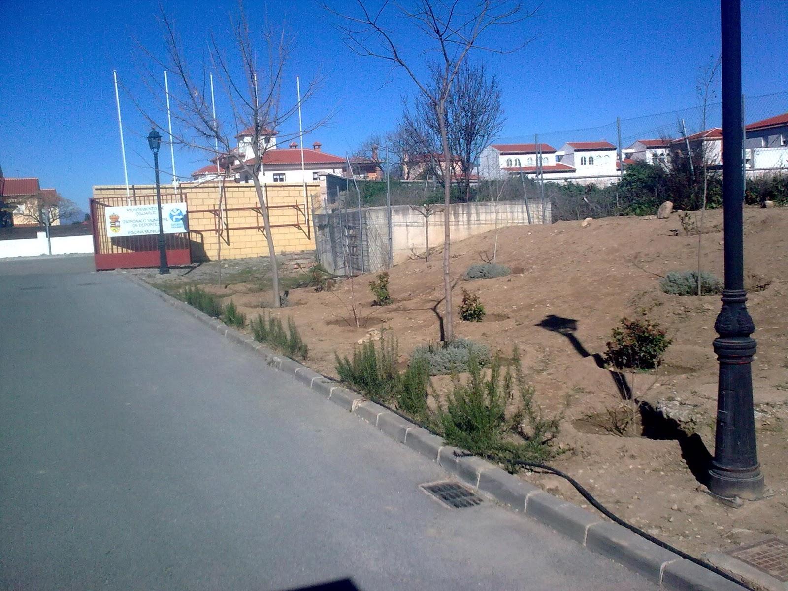Parques y jardines de ogijares piscina municipal arreglo for Arreglos de parques y jardines