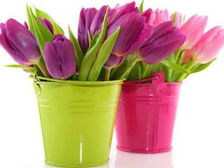 Tulipanes para decorar