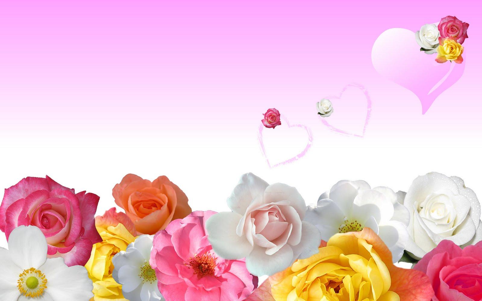 http://4.bp.blogspot.com/-RjDesxEIoU8/TscTNP_SsBI/AAAAAAAAAgI/hKJwSwD0jng/s1600/pink-flower-wallpaper-7-727711.jpg