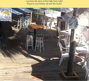 SC: Hilton Head, Salty Dog Cafe (one of 10 cams available)