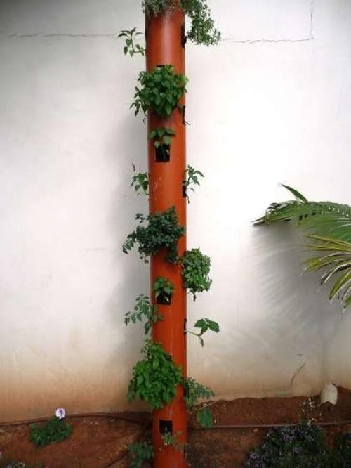 jardim vertical tubo pvc:Tubo PVC