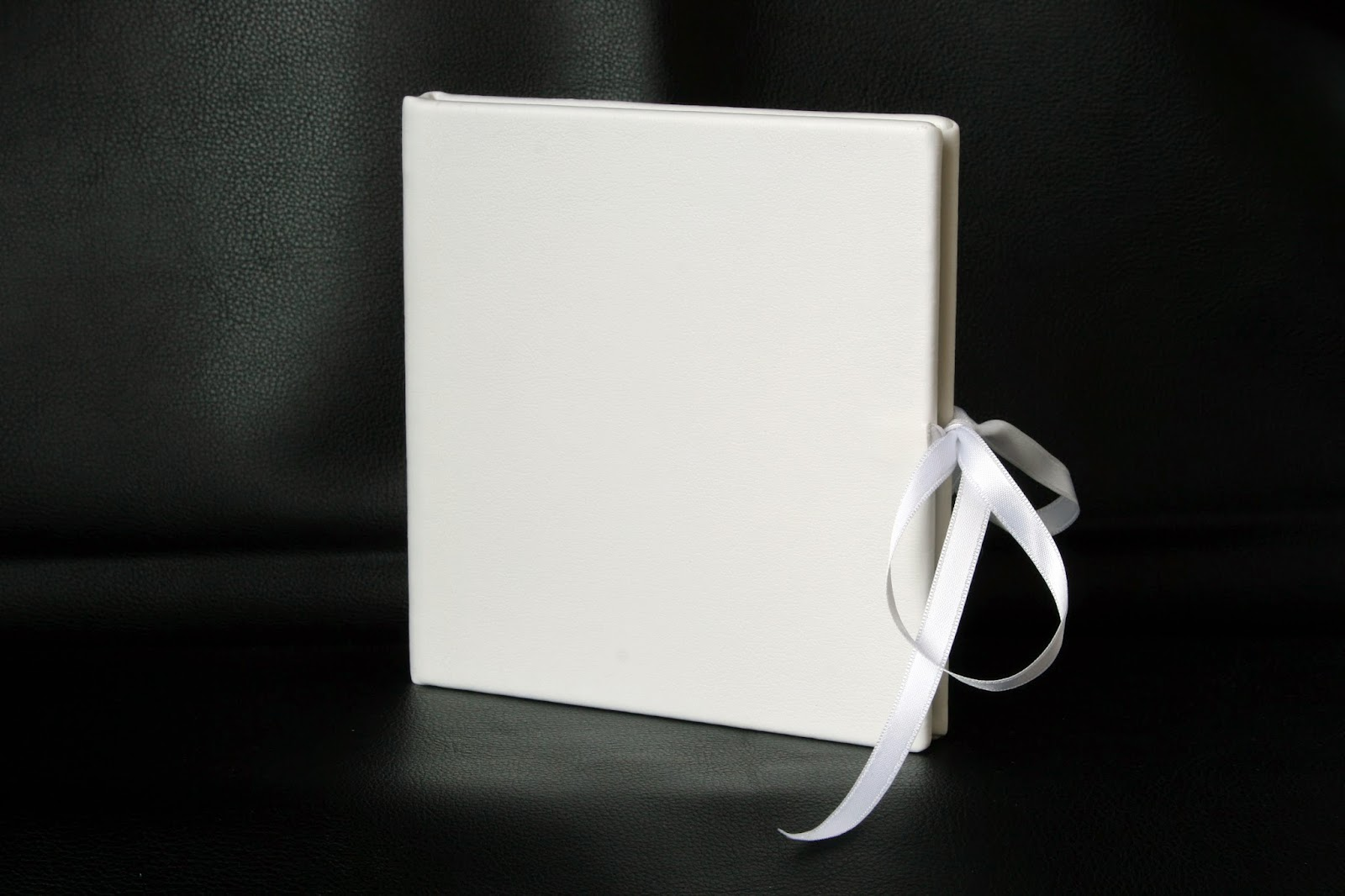 Estuche para DVD SPiel Blanco