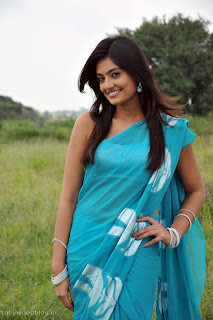 Nikitha Narayana in Blue Transparent Saree in movie Its My Love Story