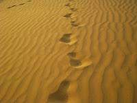 digital transformation as a quest - footprints in a desert