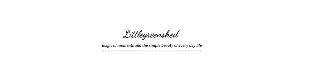 littlegreenshed - lifestyle & family adventures blog