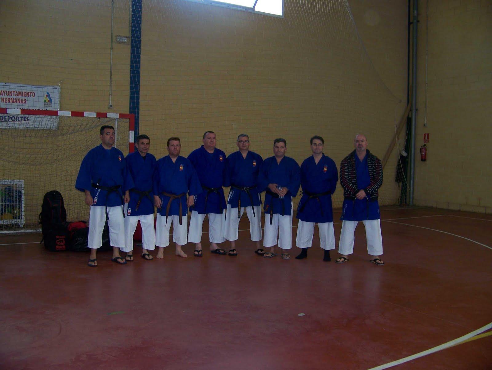 Artes marciales motril seminario de goshin en sevilla 2011 - Artes marciales sevilla ...