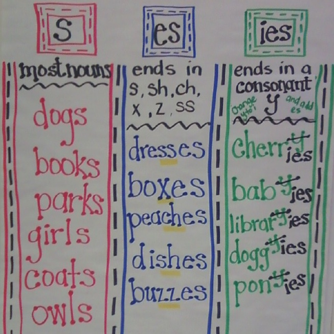 Plural Nouns - The Teacher's Chatterbox