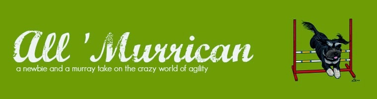 All 'Murrican