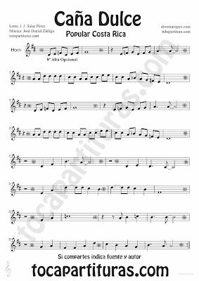 Tubepartitura Caña Dulce de J. Daniel Zúñiga y J.J. Salas Pérez partitura para Trompa y Corno canción Tradicional de Costa Rica