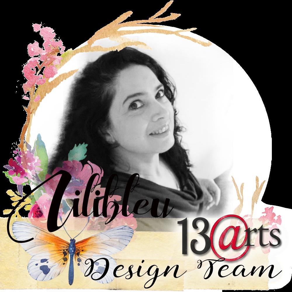 DT 13 Arts 2016 -2017