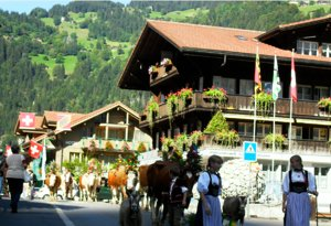 Wheelchair walk in nature at Lauterbrunnen, Interlaken, Swiss Alps