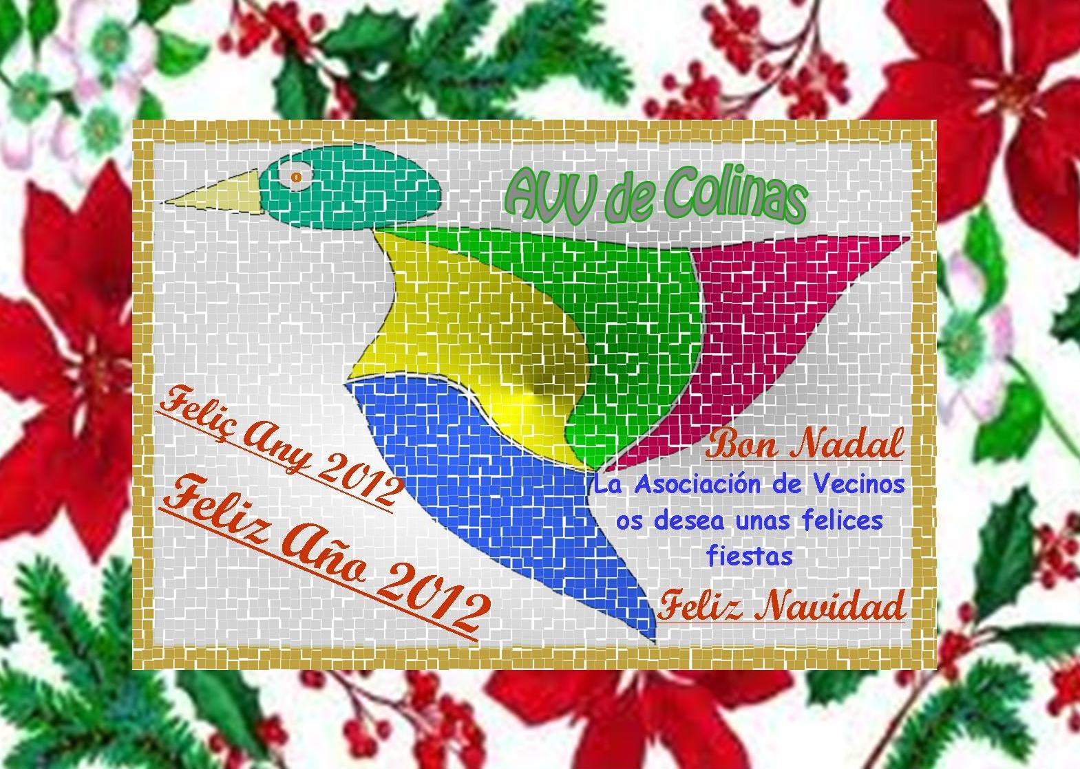 ASOCIACION DE VECINOS DE COLINAS DE SAN ANTONIO: 2011