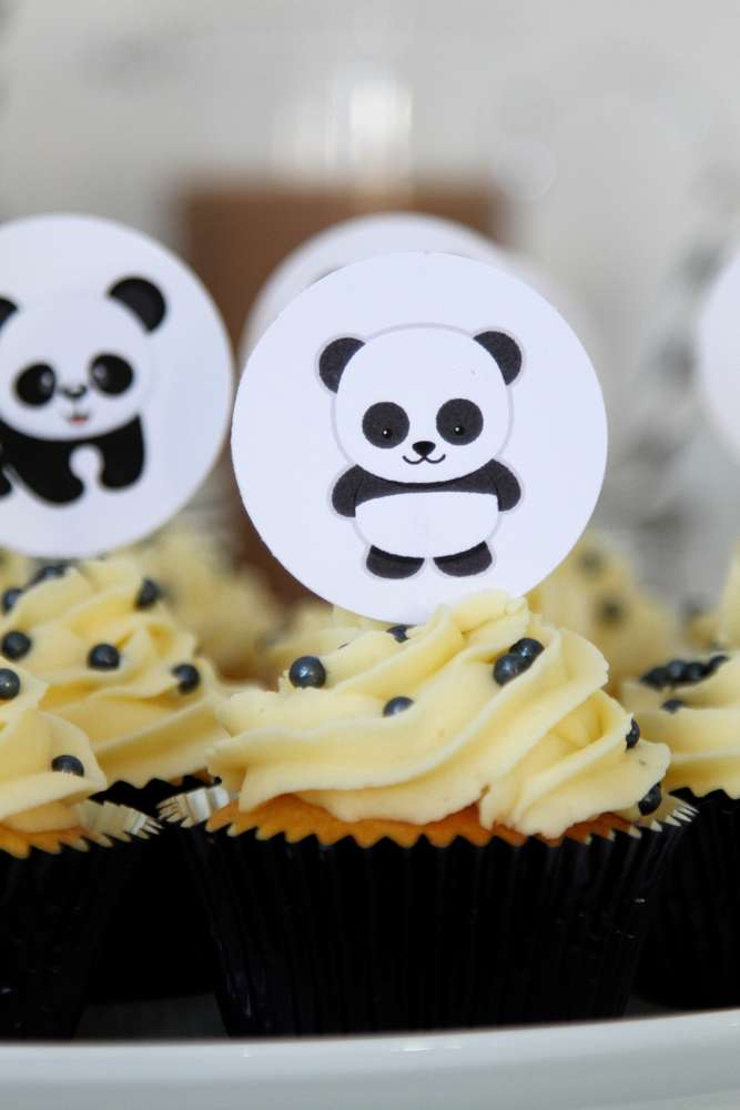 Spotlight Cake Decorating Supplies