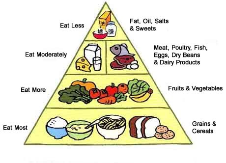 C.E.I.P. Sancho II. 1º y 2º: THE FOOD PYRAMID