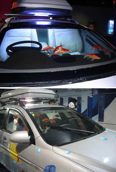 10 cool and crazy fish tanks crazy pics for Car fish tank