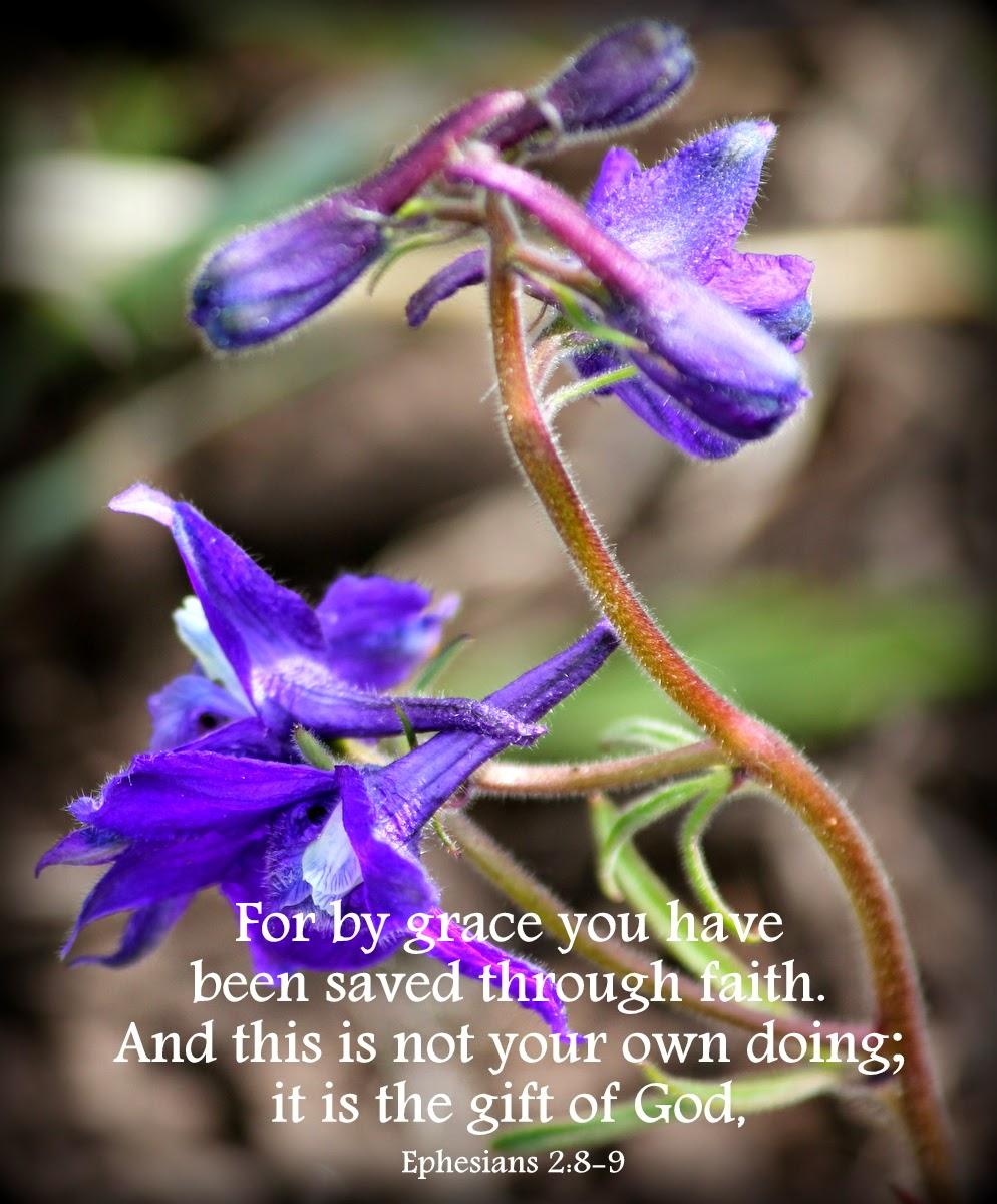 God's word bible verse http://bec4-beyondthepicketfence.blogspot.com/2014/04/sunday-verses_13.html