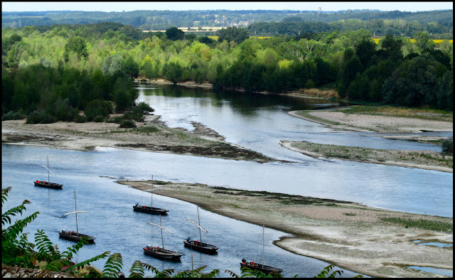 View of traditional boats on the Loire River taken from the Chateau Chaumont sur Loire France 29th June 2011