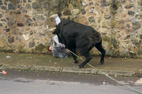 Marco da Casa dos Segredos foi marrado por touro nos Açores