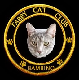 Bambino is a Member