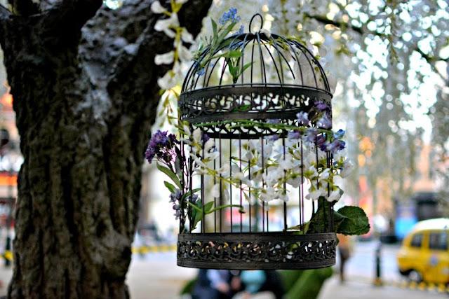 The Botanist Chelsea in Bloom 2015 Sloane Square