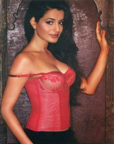 Amisha Patel Bollywood Actress