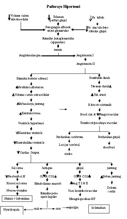 Pathway hipertensi, pathways hipertensi,Pathway keperawatan hipertensi, patoflow hipertensi,