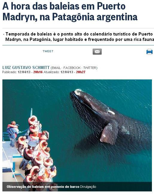 Observação de baleias na Puerto Madryn