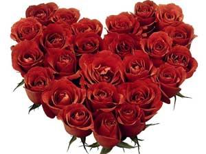 Красные розы – цветы на День Святого Валентина