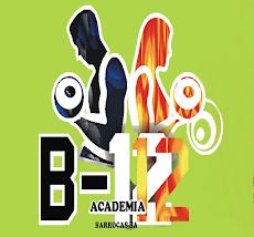 Academia B12