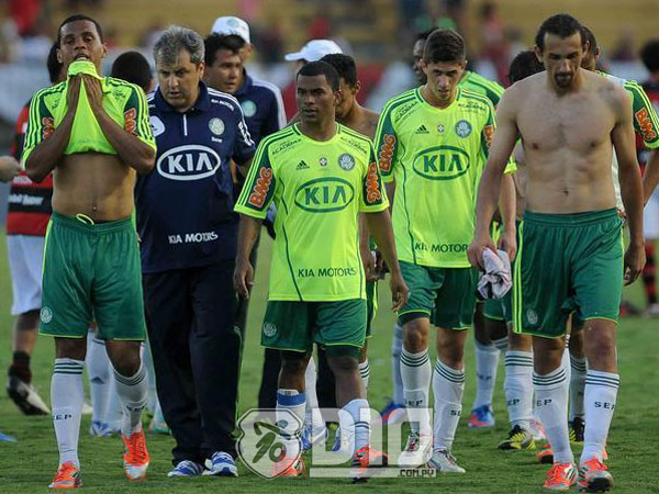 Palmeiras, a la segunda división del fútbol brasileño