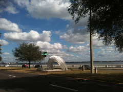 Slinky on Tampa Bay Front