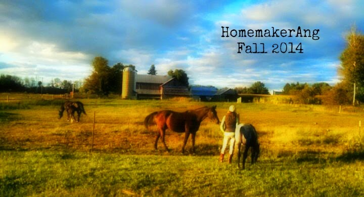 Living simply at The Maple Valley Homestead - HomemakerAng and Co.
