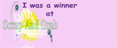 Scrap and Grab winner