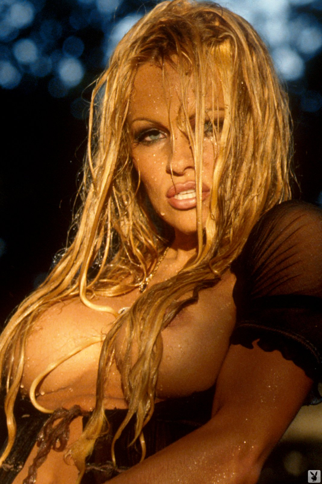 pamela anderson playboy nude naked wet pambition.com%252B%252525284%25252529 This week's naturally busty babe is playing with her big natural tits!