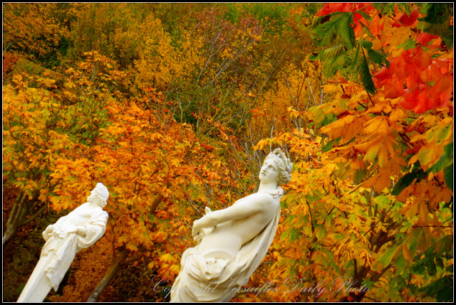 Autumn colours in the gardens of Versailles palace