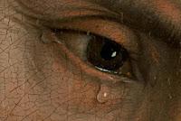 http://4.bp.blogspot.com/-RnrR88w3jis/USzbumw8D6I/AAAAAAAAOn8/mpTeGuuvY-w/s1600/metanoia.jpg
