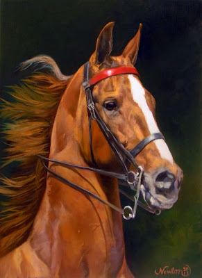 caballos-finos