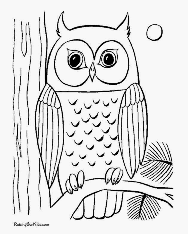 Owl Coloring Page
