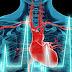 CoQHealth Plus : Suplemen Terbaik Untuk Jantung Anda