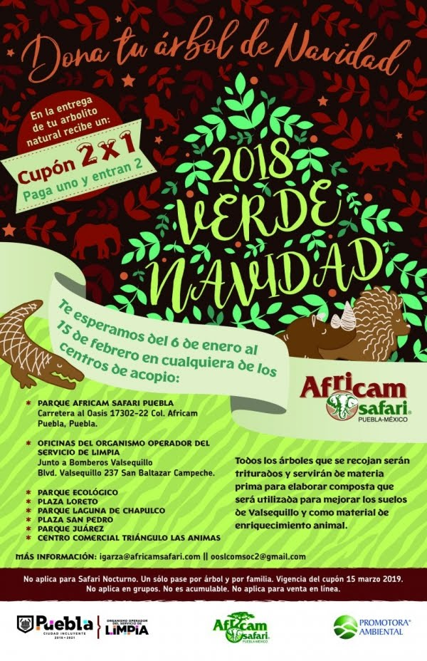 """INICIA CAMPAÑA DE RECOLECCIÓN DE ÁRBOLES """"VERDE NAVIDAD 2018"""