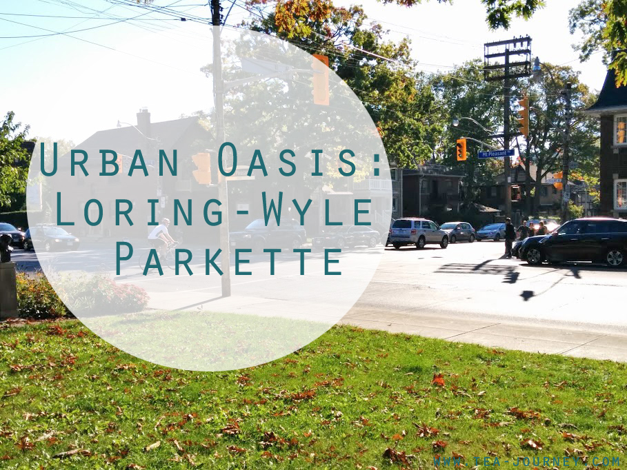 Loring- Wyle Parkette Toronto Urban Oasis is a collection of images of spaces in cities where we can take a few moments to connect with nature, find balance and find peace.