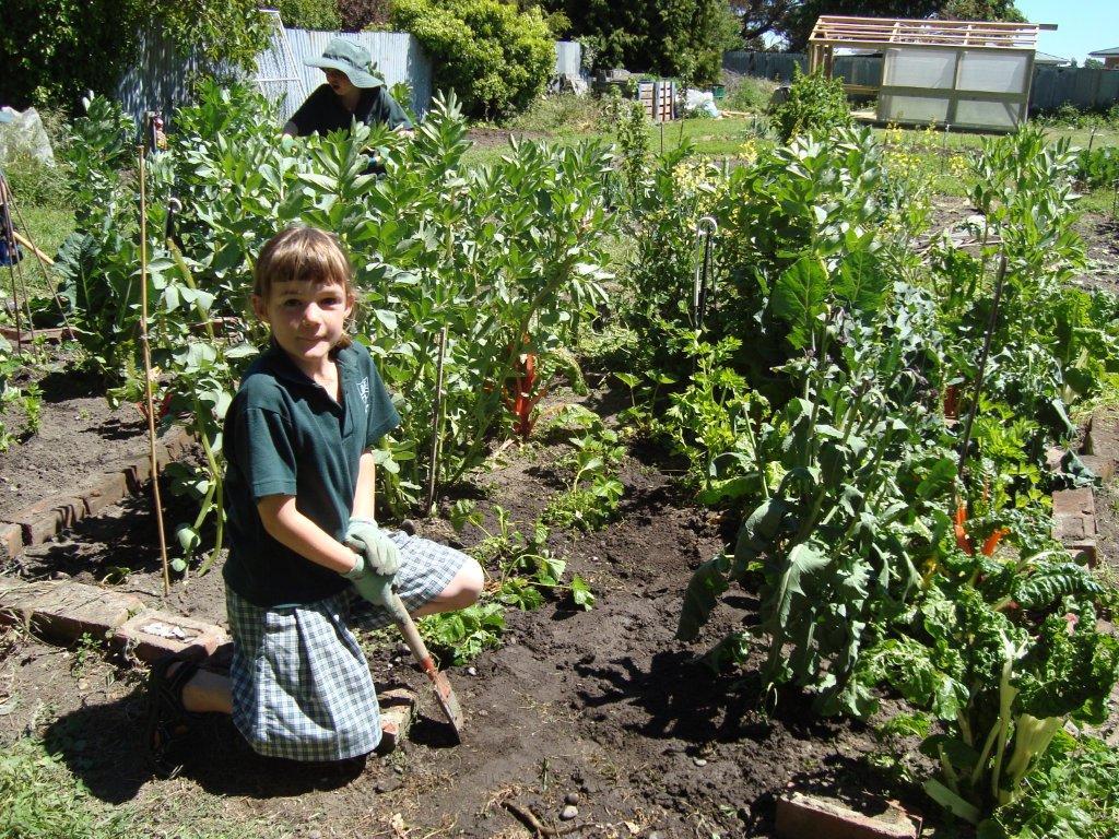 Springston waka endeavour secret garden club for Secret garden colorado springs