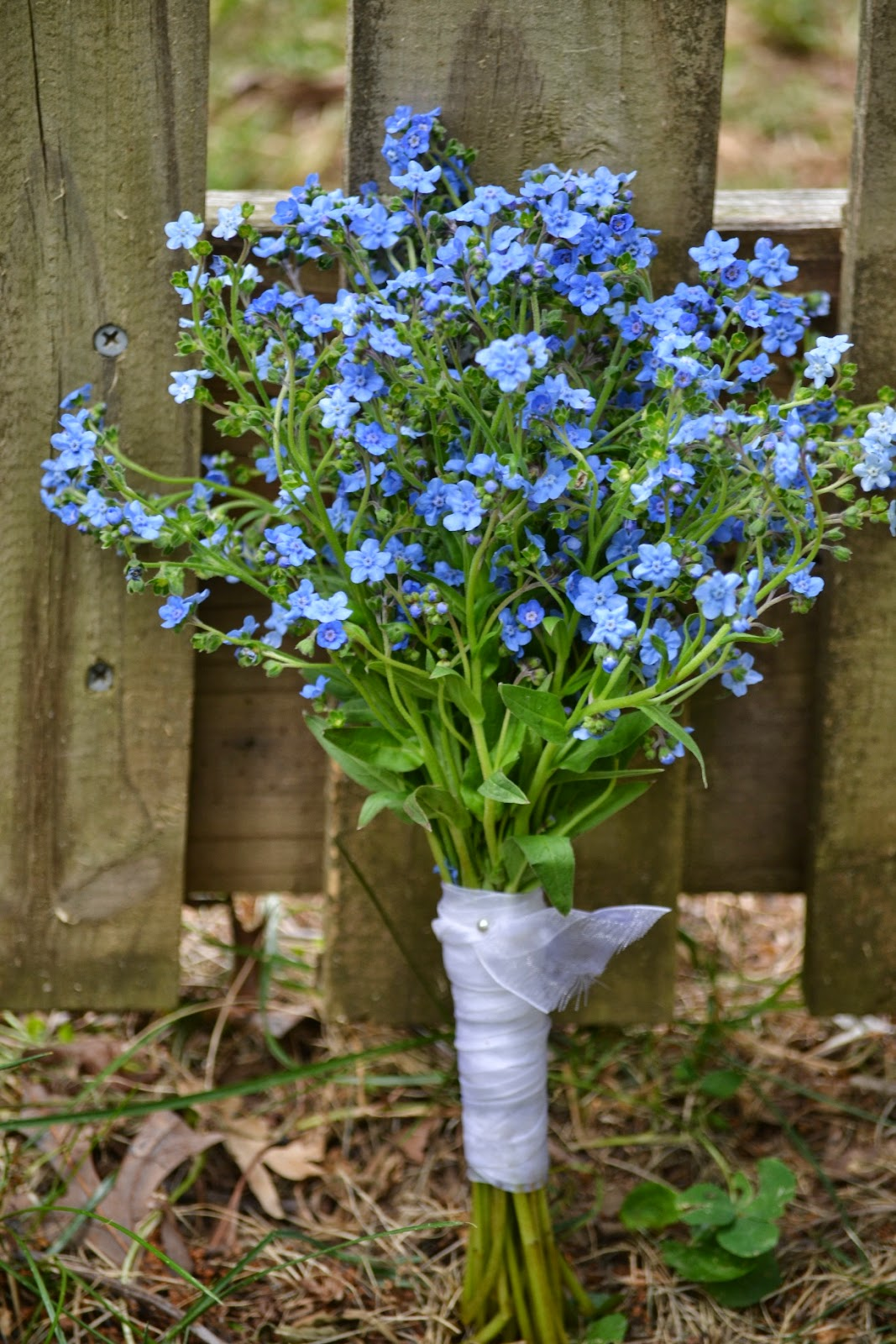 Wedding Flowers From Springwell Blue Flowers For Late Spring And