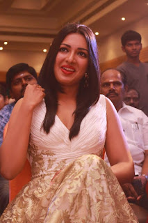 Actress Catherine Tresa Picture Gallery at Kanithan Movie Audio Launch  25289